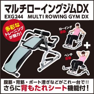 マルチローイングジムDX/EXG244