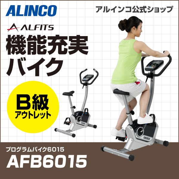 プログラムバイク 6015/AFB6015B